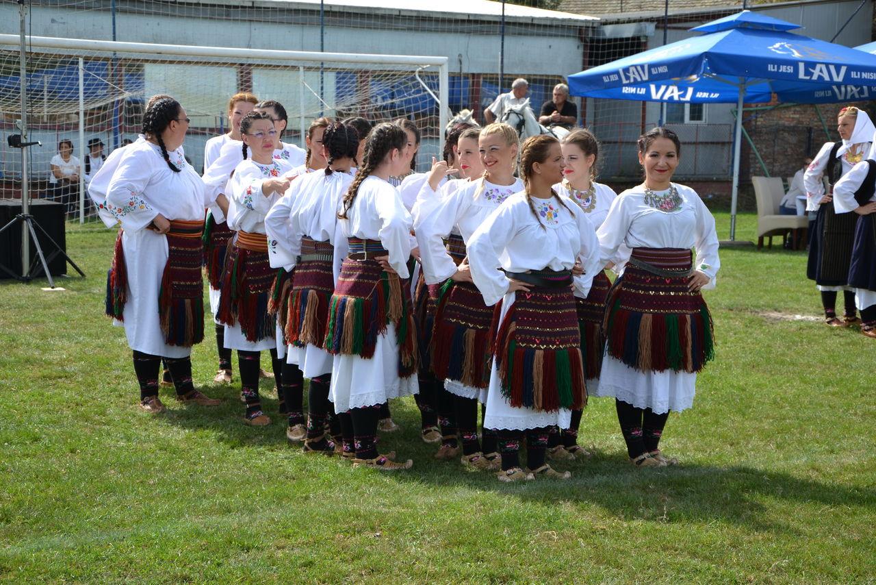 Folklorni_festival_RAVNICA_KUD_NERA_Novi_SadDSC_0387