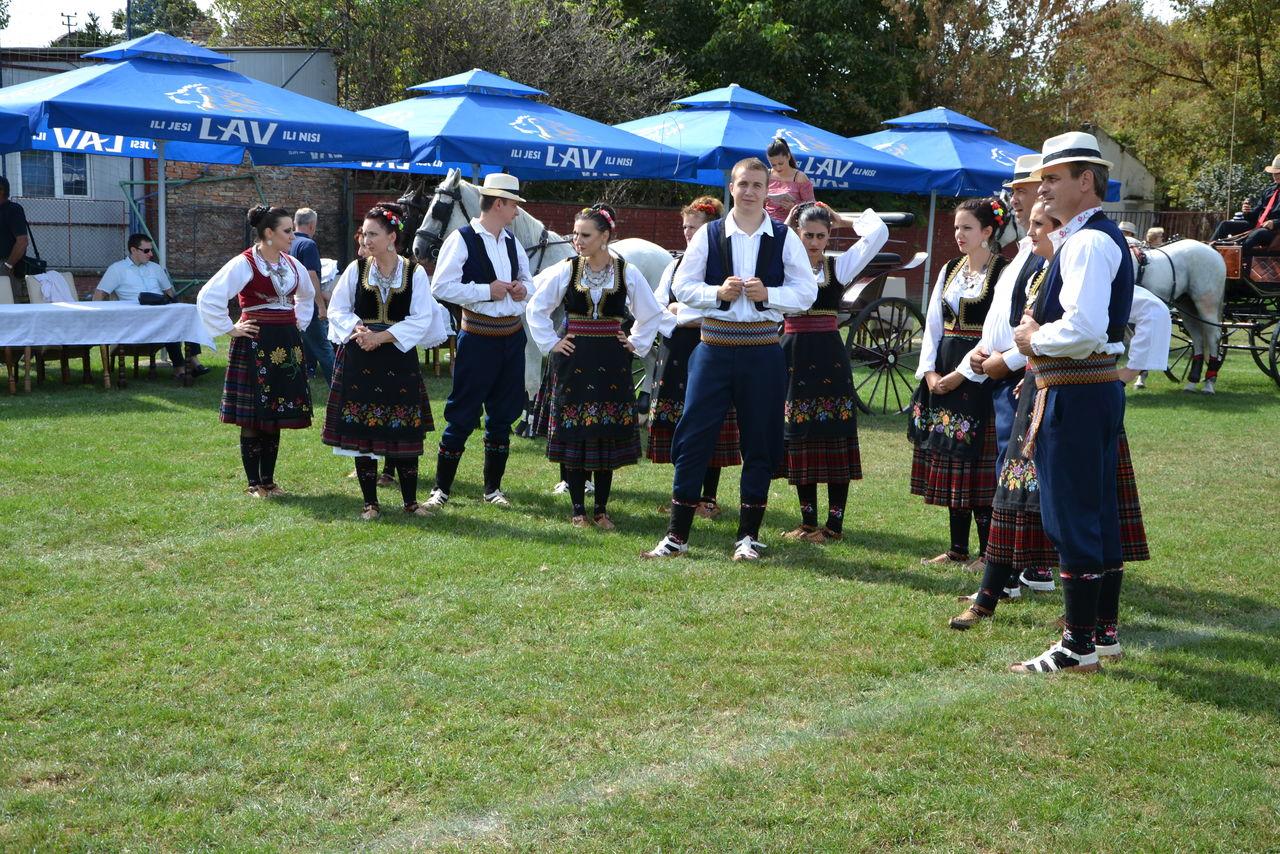 Folklorni_festival_RAVNICA_KUD_NERA_Novi_SadDSC_0389