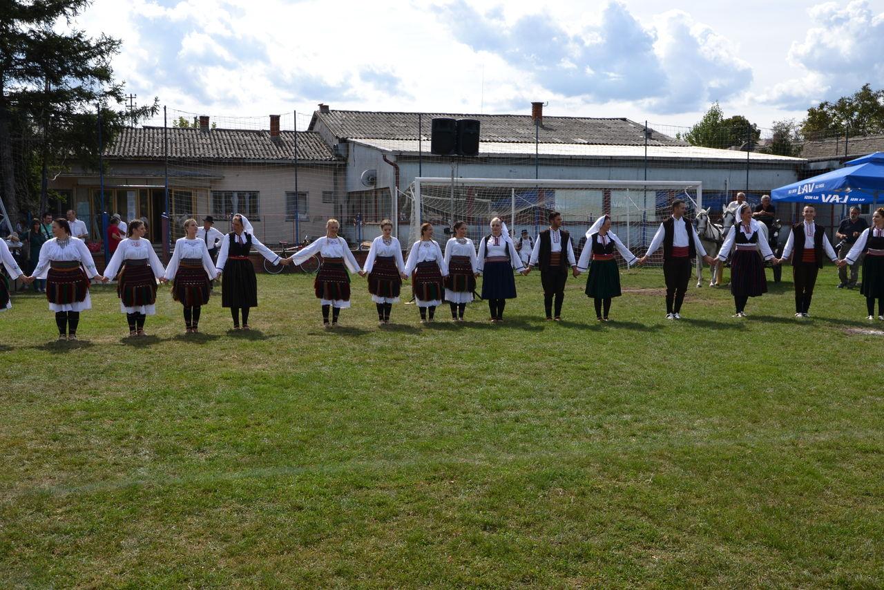 Folklorni_festival_RAVNICA_KUD_NERA_Novi_SadDSC_0394