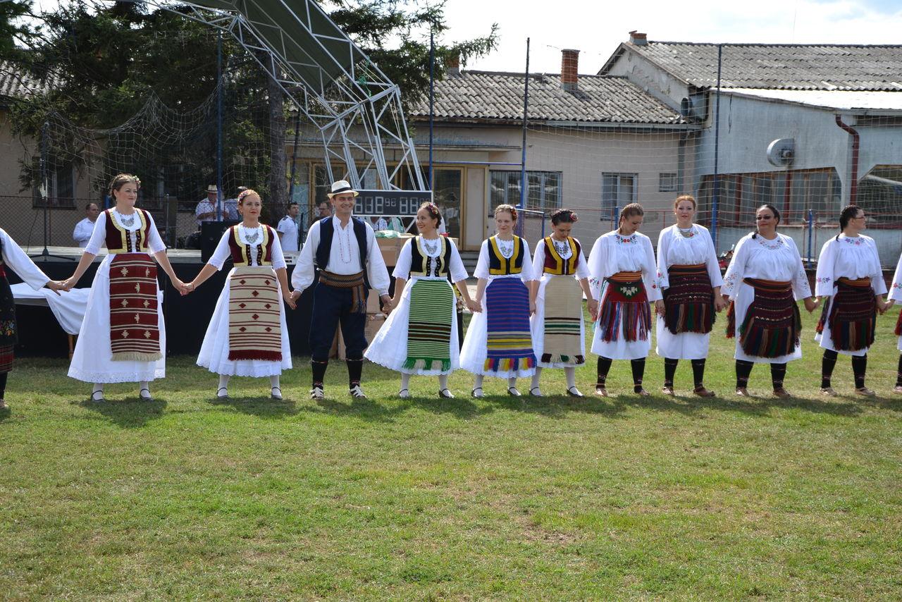 Folklorni_festival_RAVNICA_KUD_NERA_Novi_SadDSC_0401