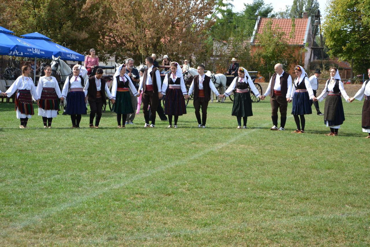Folklorni_festival_RAVNICA_KUD_NERA_Novi_SadDSC_0403
