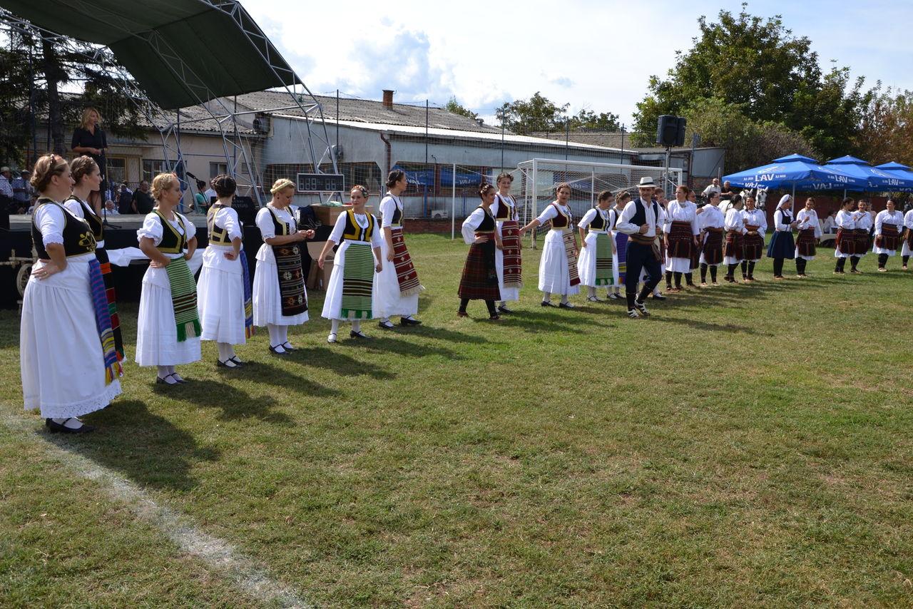 Folklorni_festival_RAVNICA_KUD_NERA_Novi_SadDSC_0406