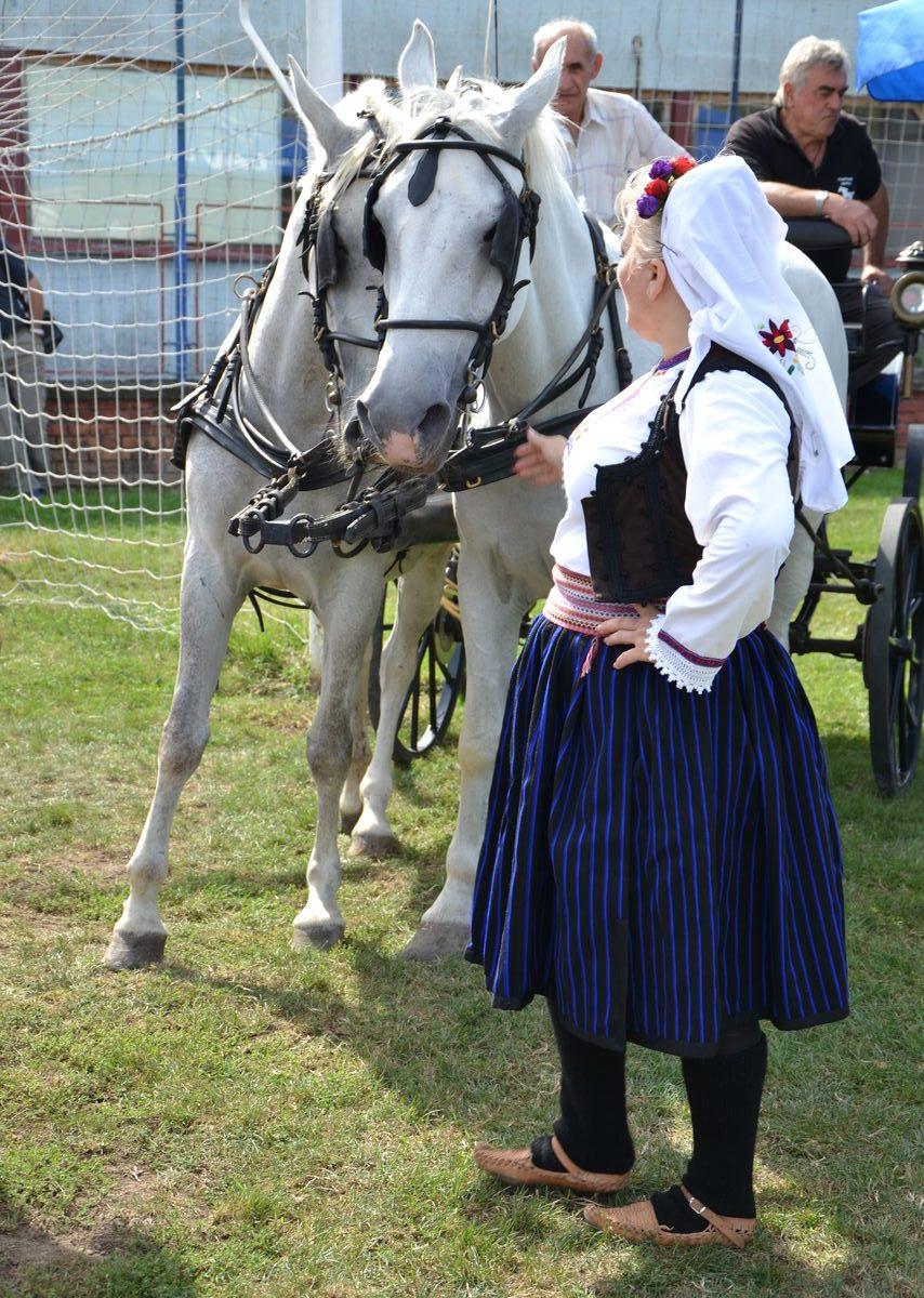 Folklorni_festival_RAVNICA_KUD_NERA_Novi_SadDSC_0414