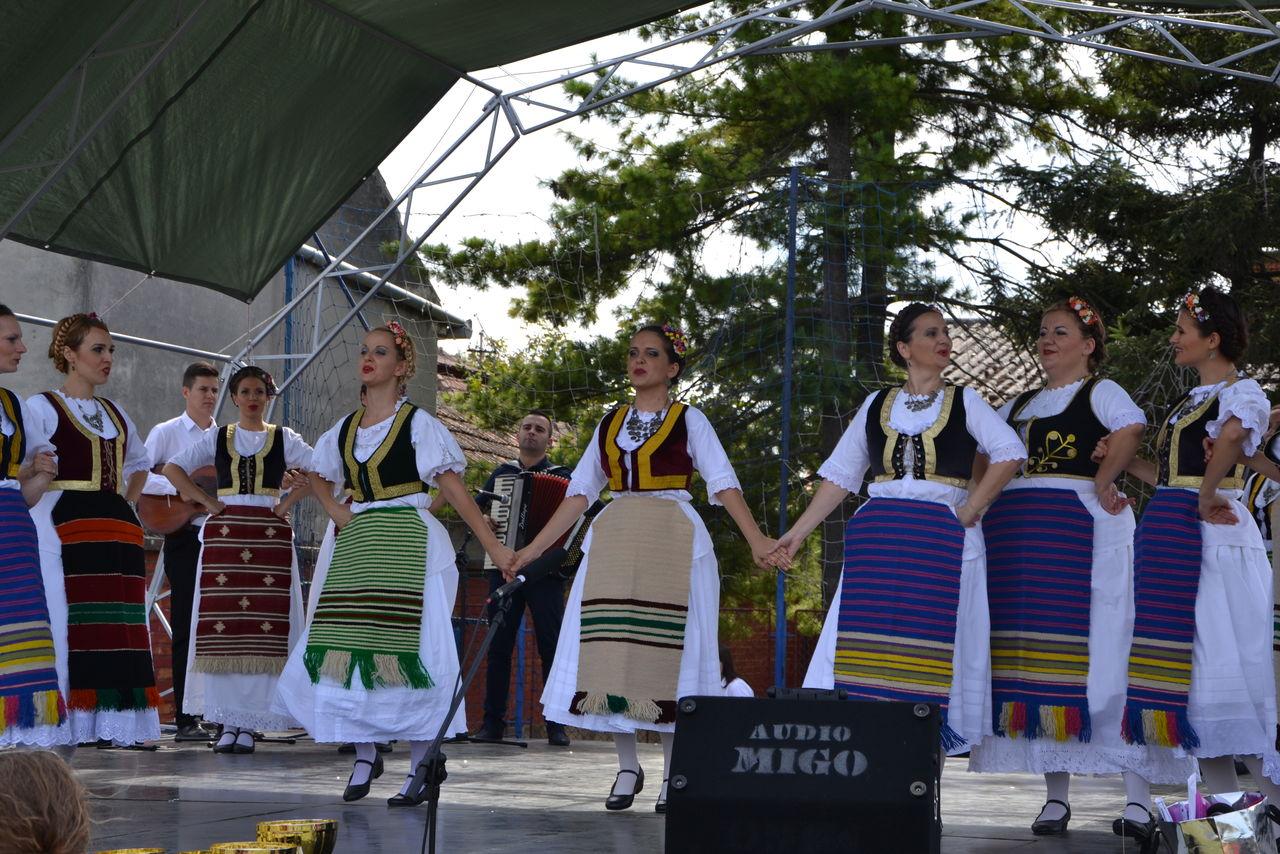 Folklorni_festival_RAVNICA_KUD_NERA_Novi_SadDSC_0418