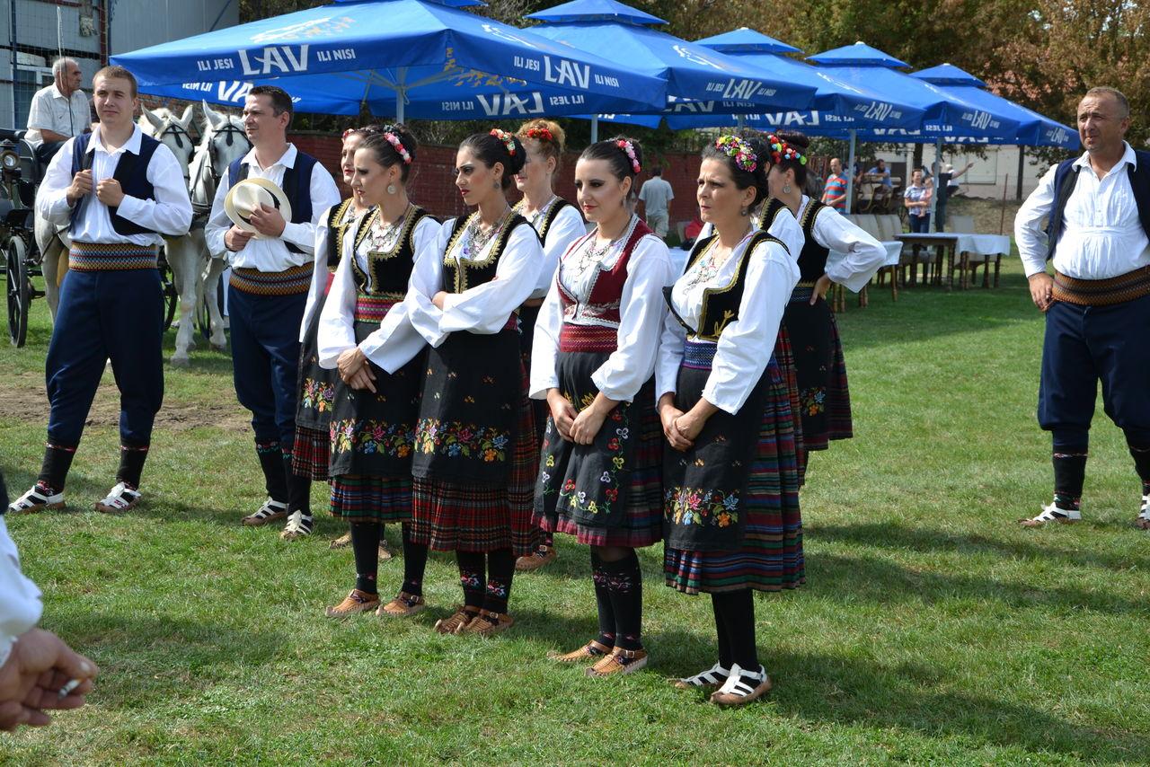 Folklorni_festival_RAVNICA_KUD_NERA_Novi_SadDSC_0422