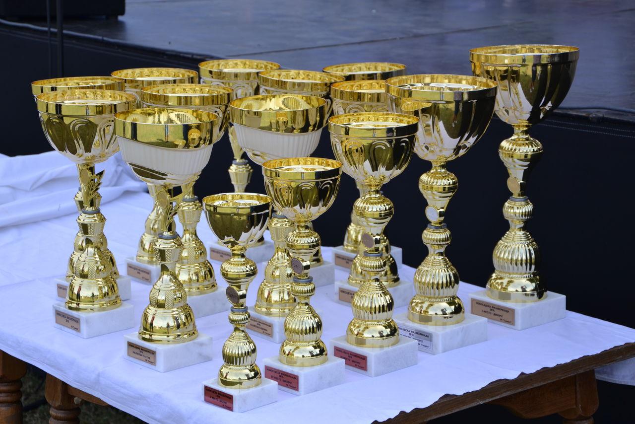 Folklorni_festival_RAVNICA_KUD_NERA_Novi_SadDSC_0430