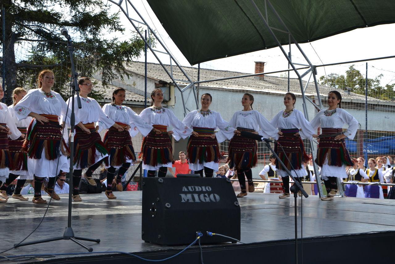 Folklorni_festival_RAVNICA_KUD_NERA_Novi_SadDSC_0439