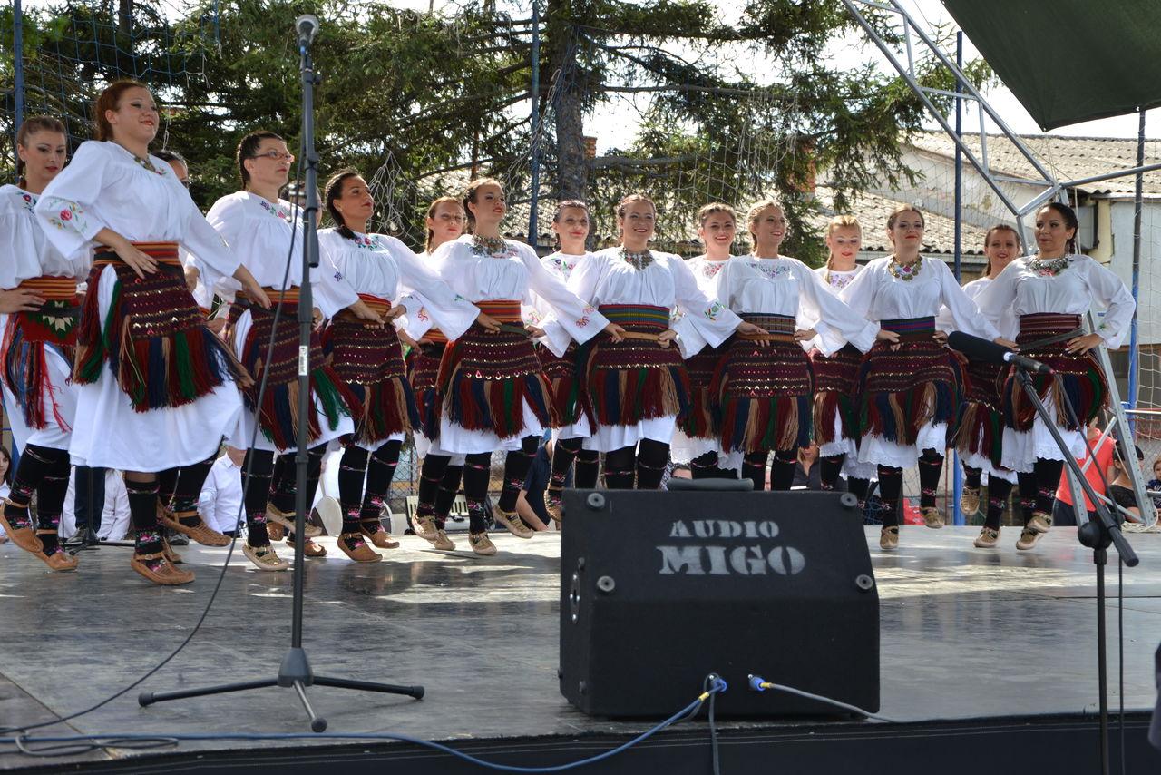 Folklorni_festival_RAVNICA_KUD_NERA_Novi_SadDSC_0440