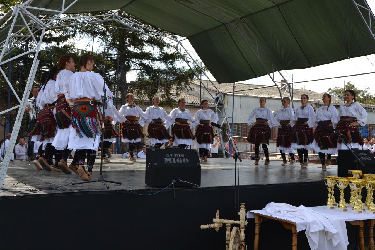 Folklorni_festival_RAVNICA_KUD_NERA_Novi_SadDSC_0441
