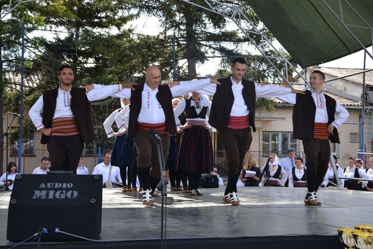 Folklorni_festival_RAVNICA_KUD_NERA_Novi_SadDSC_0462