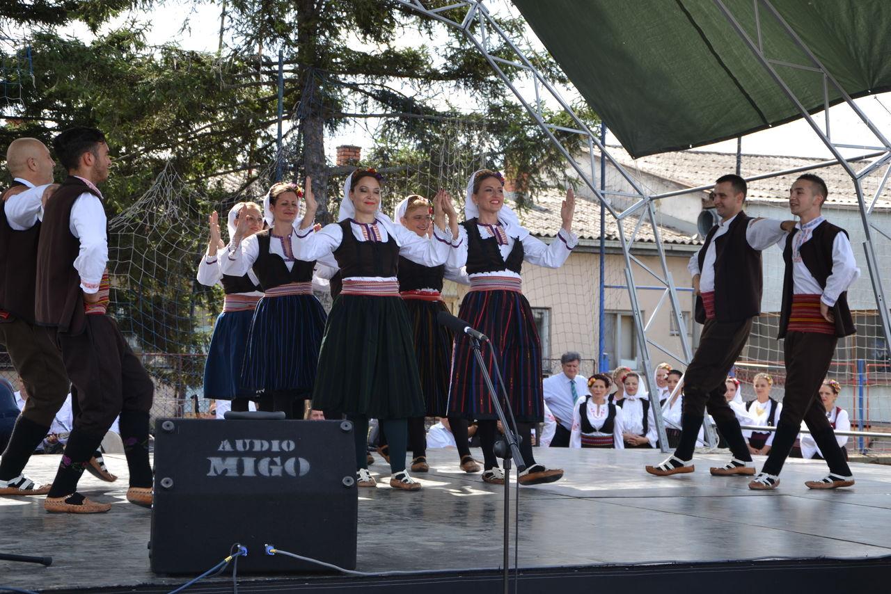 Folklorni_festival_RAVNICA_KUD_NERA_Novi_SadDSC_0463
