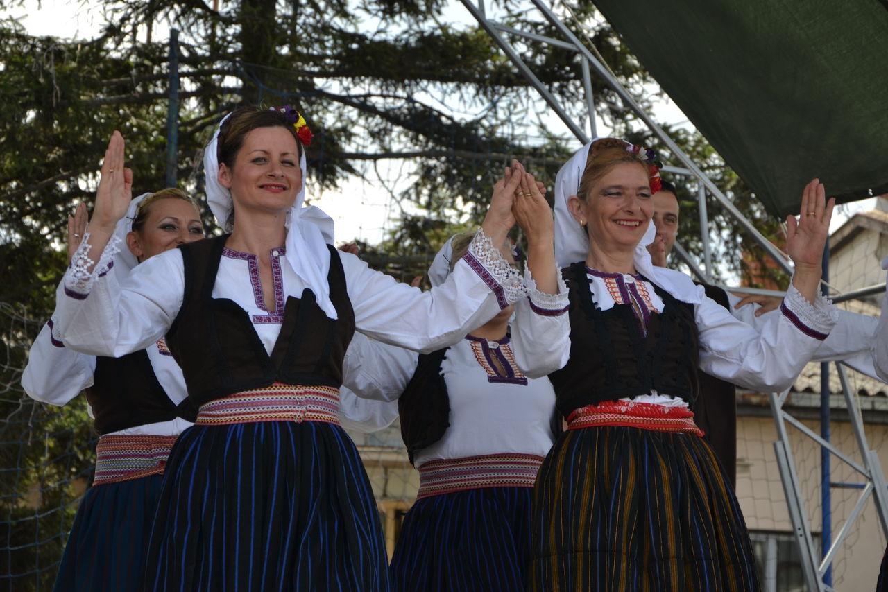 Folklorni_festival_RAVNICA_KUD_NERA_Novi_SadDSC_0465
