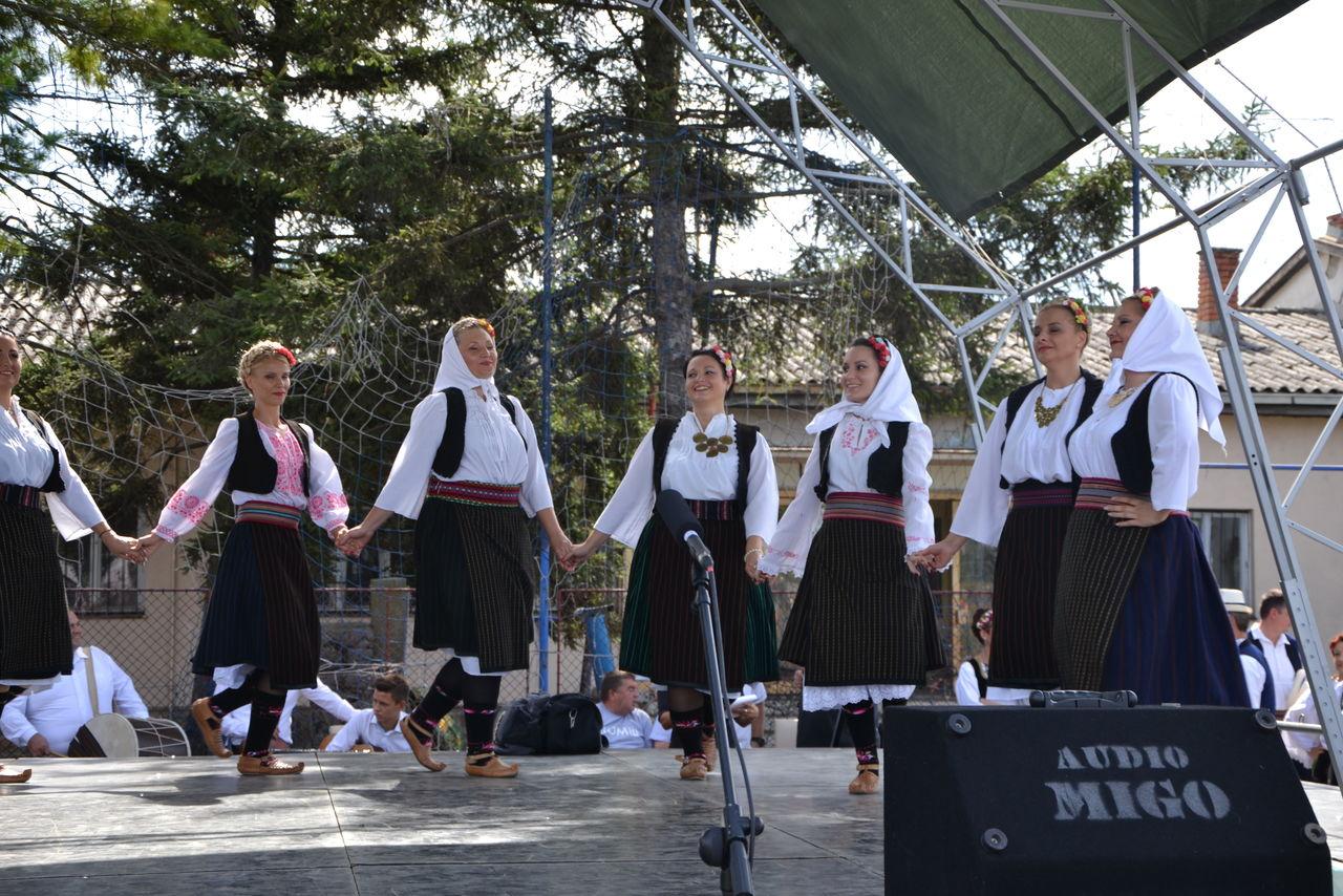 Folklorni_festival_RAVNICA_KUD_NERA_Novi_SadDSC_0489