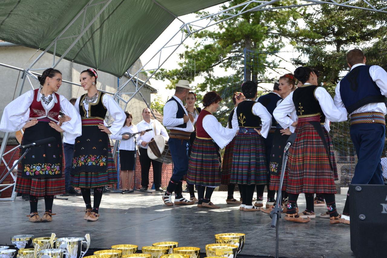 Folklorni_festival_RAVNICA_KUD_NERA_Novi_SadDSC_0507