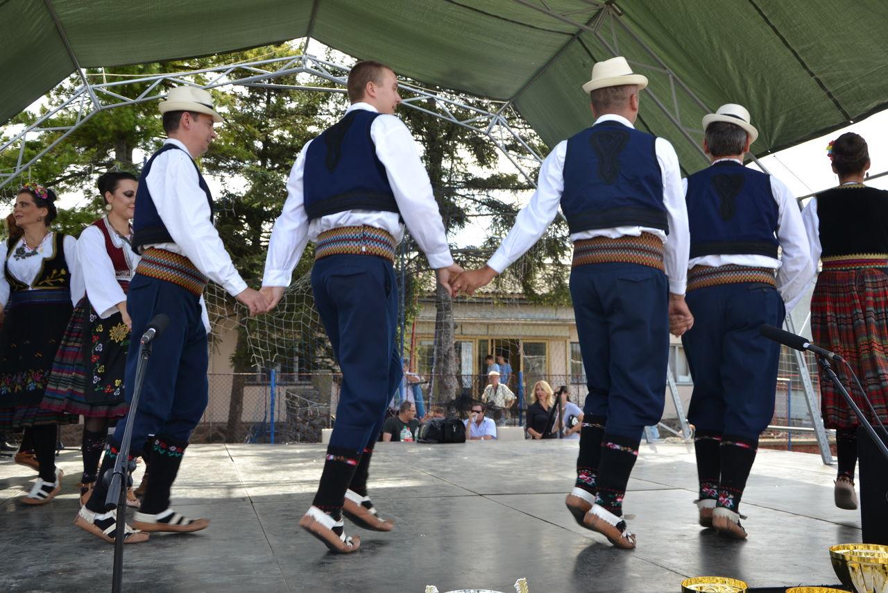 Folklorni_festival_RAVNICA_KUD_NERA_Novi_SadDSC_0533