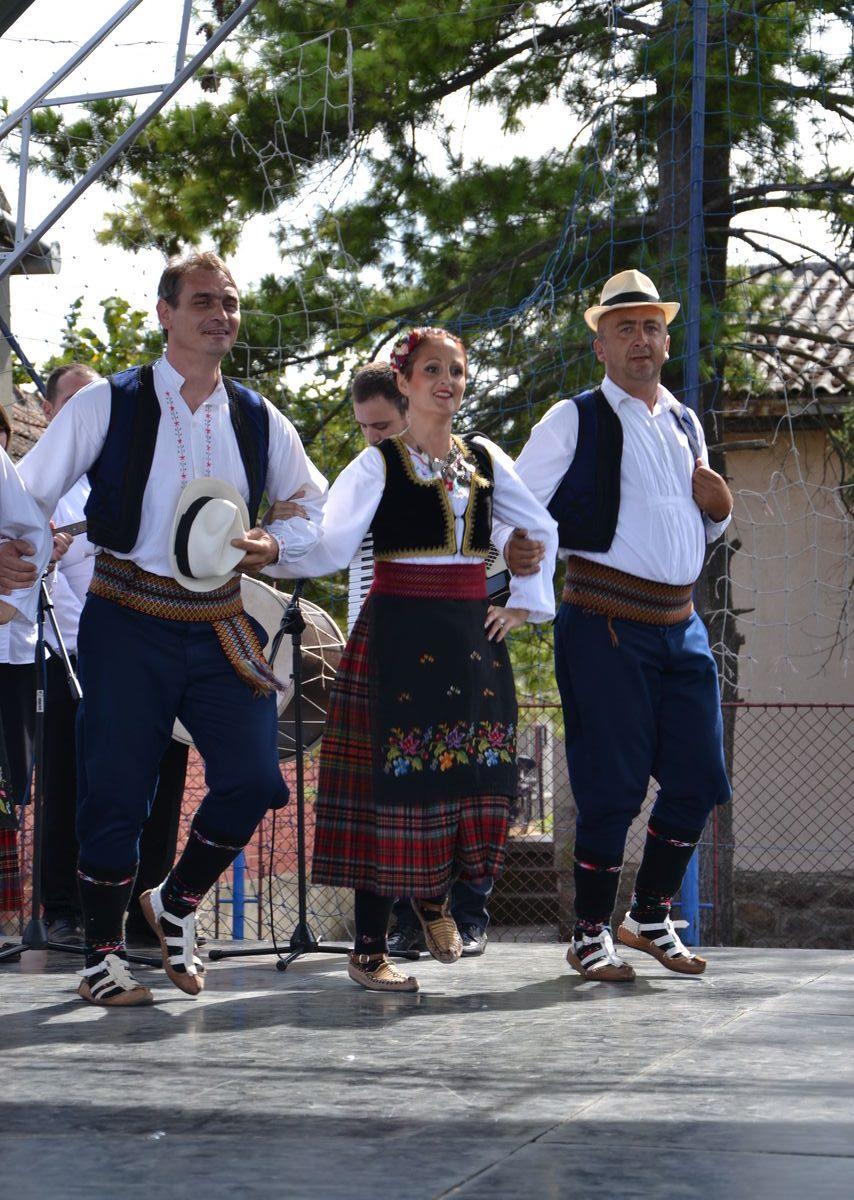 Folklorni_festival_RAVNICA_KUD_NERA_Novi_SadDSC_0555