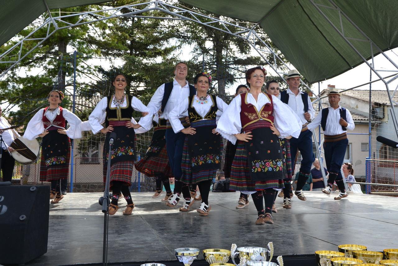 Folklorni_festival_RAVNICA_KUD_NERA_Novi_SadDSC_0558