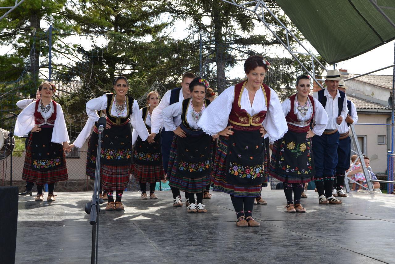 Folklorni_festival_RAVNICA_KUD_NERA_Novi_SadDSC_0561